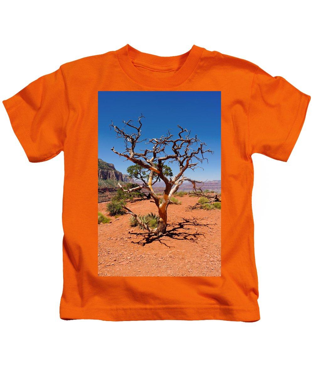 Tree Kids T-Shirt featuring the photograph Tree At Cedar Ridge by Julie Niemela