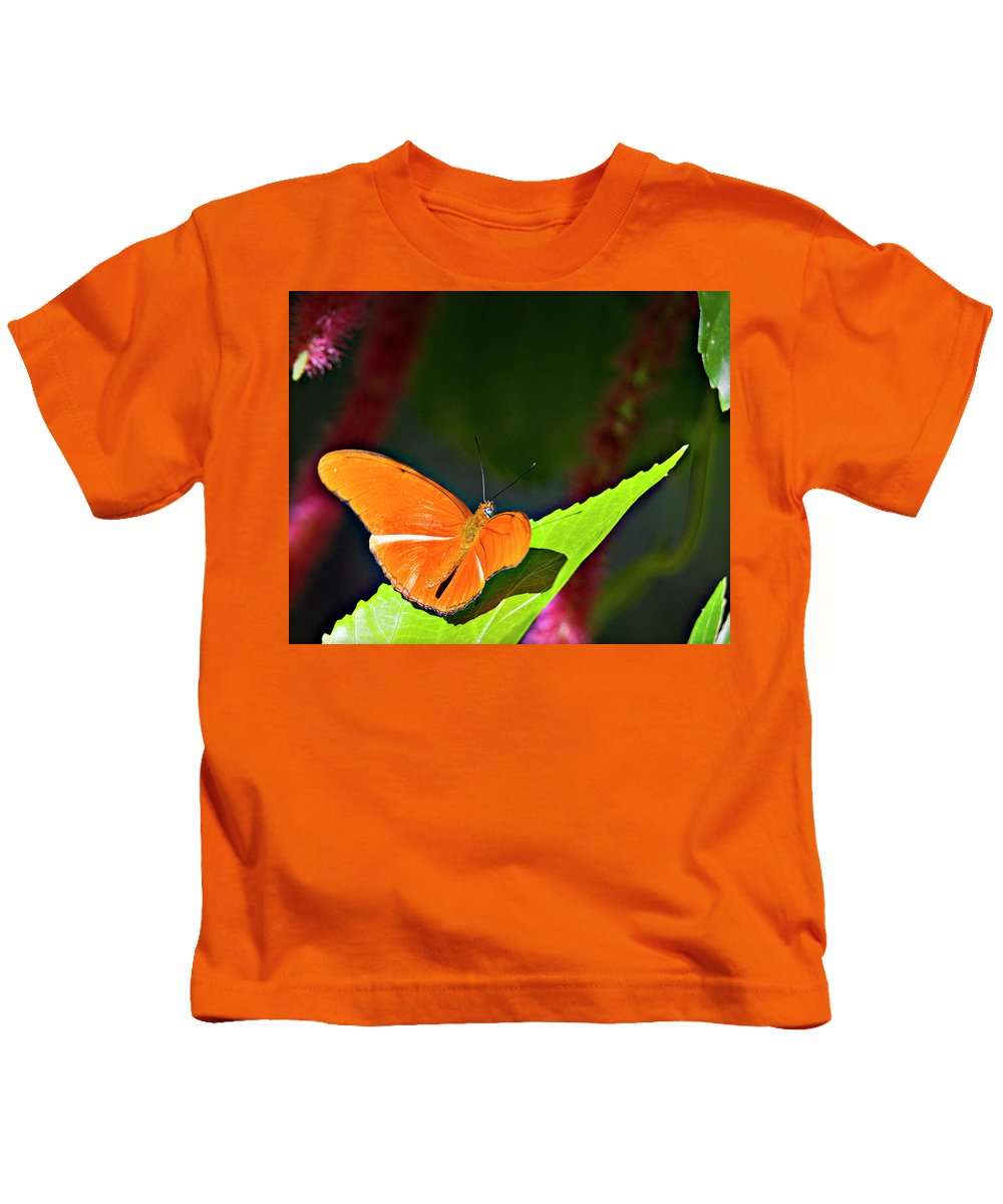 Butterfly Kids T-Shirt featuring the photograph Butterfly 22 by Walter Herrit