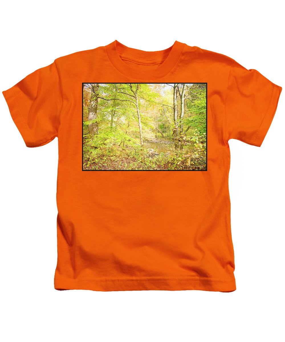 Stream Kids T-Shirt featuring the photograph Glimpse Of A Stream In Autumn by A Gurmankin