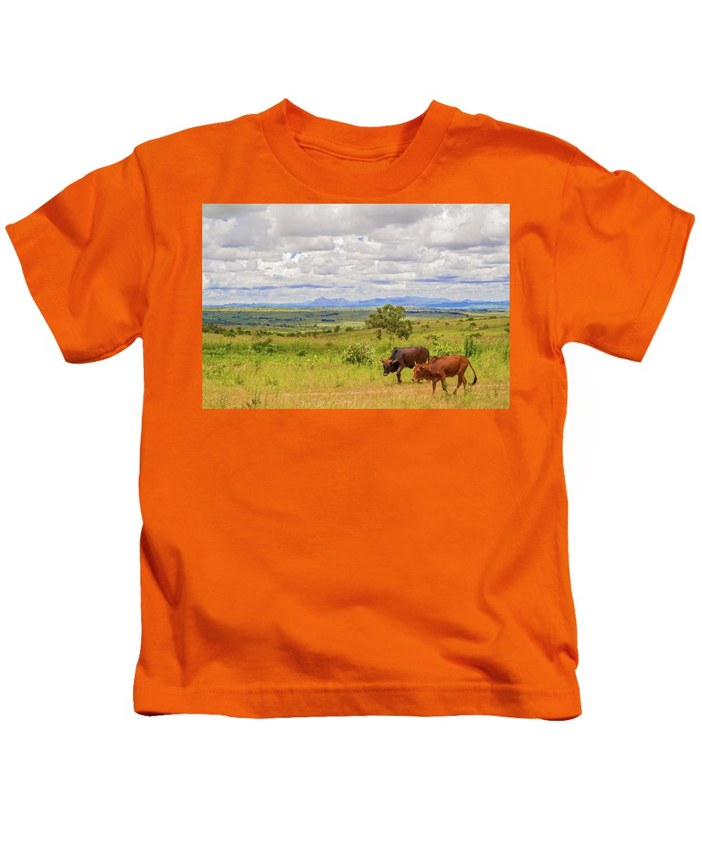 Landscape Kids T-Shirt featuring the photograph Landscape In Malawi by Marek Poplawski