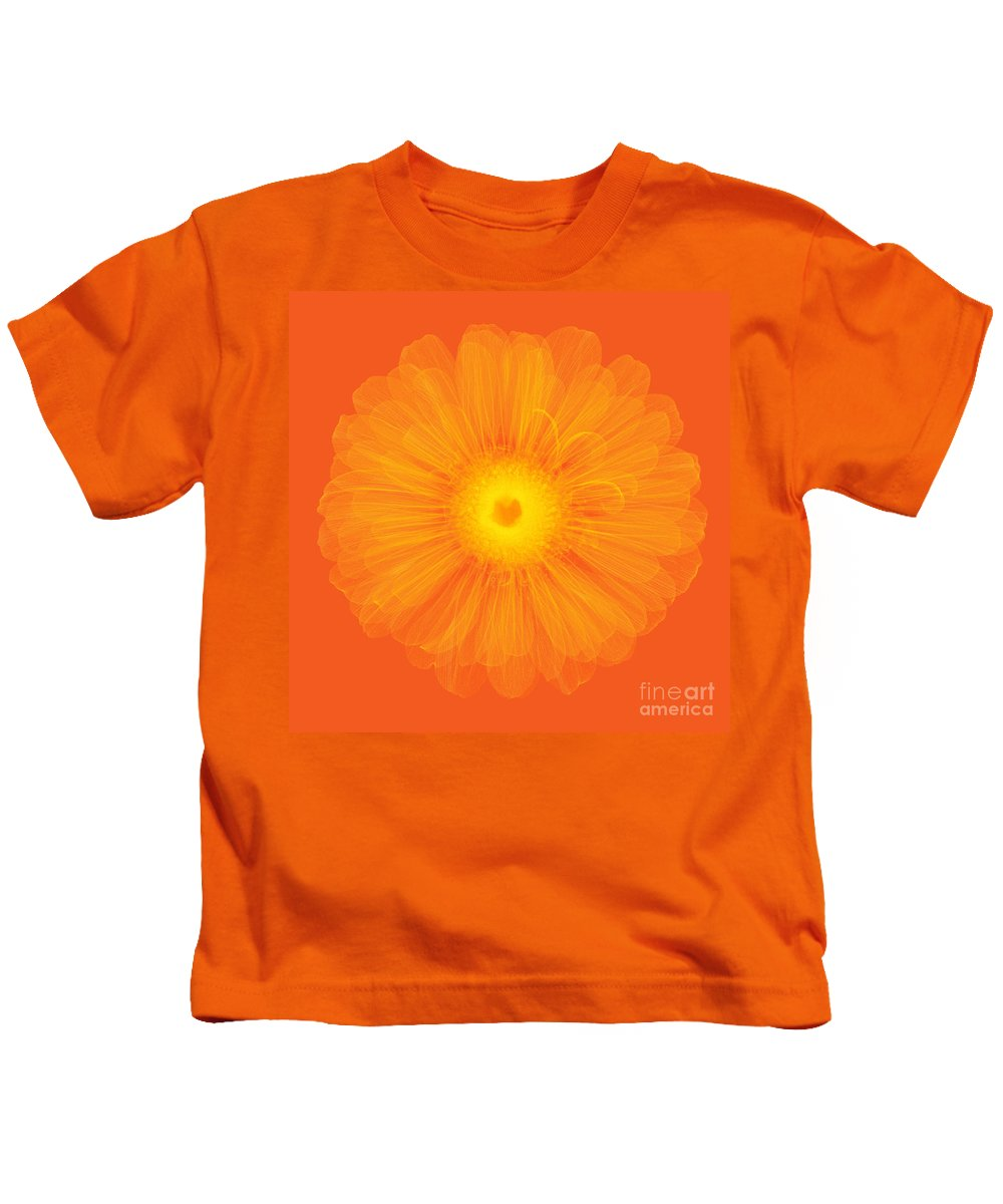 Science Kids T-Shirt featuring the photograph Zinnia Flower, X-ray by Ted Kinsman