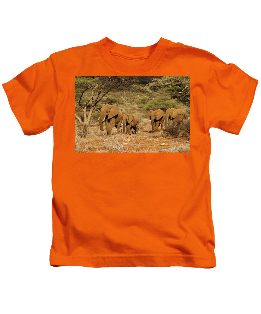 Africa Kids T-Shirt featuring the photograph Elephant Parade by Michele Burgess