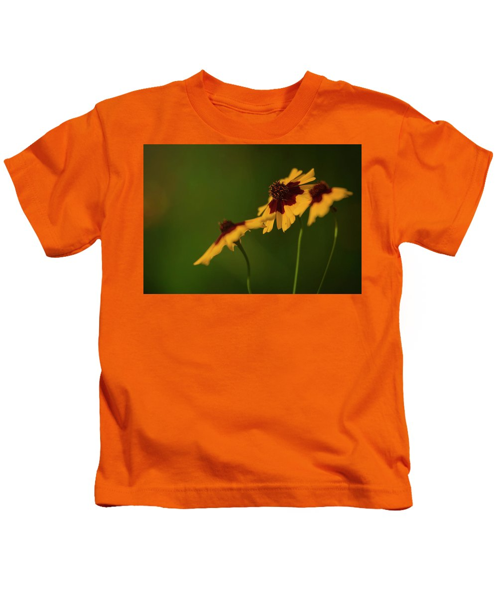 Landscape Kids T-Shirt featuring the photograph Afternoon Sun by Lance Boggan
