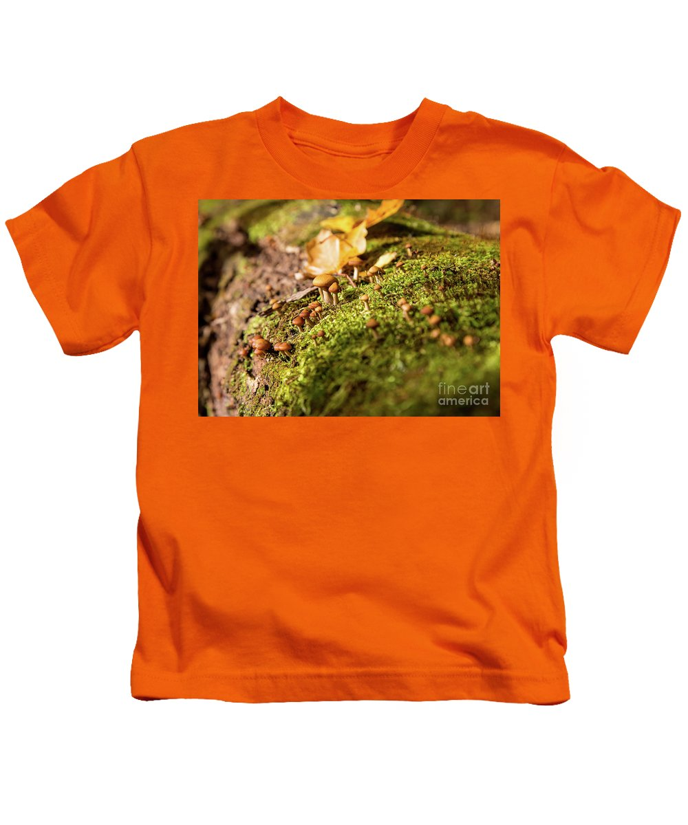 Fall Kids T-Shirt featuring the photograph Another World by CJ Benson