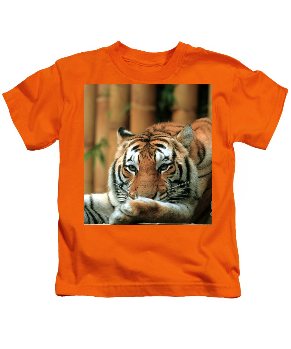 Tiger Kids T-Shirt featuring the photograph Asian Tiger 5 by Randy Matthews