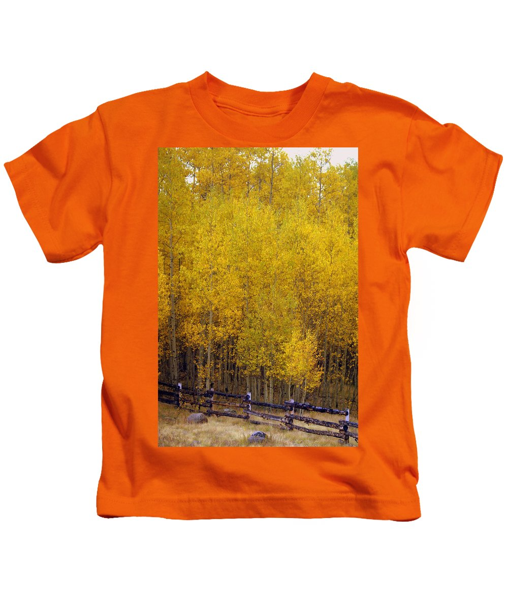 Fall Colors Kids T-Shirt featuring the photograph Aspen Fall 2 by Marty Koch