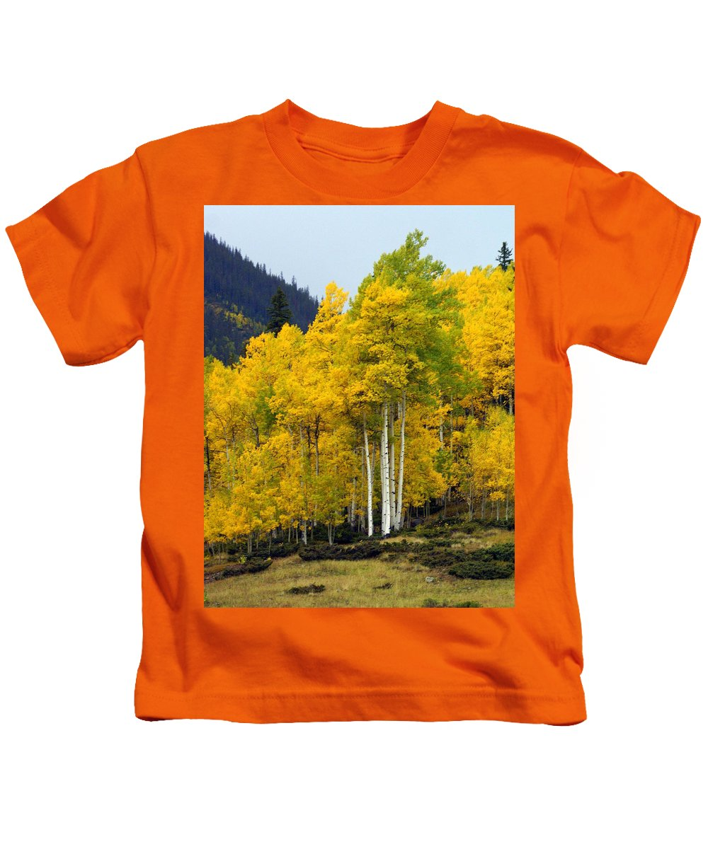 Fall Colors Kids T-Shirt featuring the photograph Aspen Fall 3 by Marty Koch