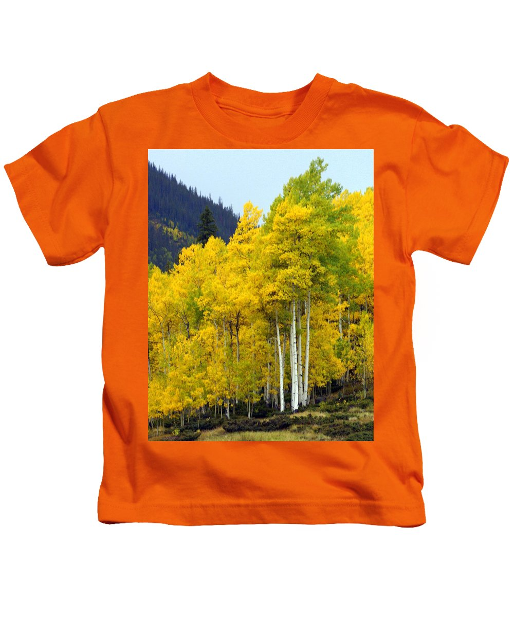 Fall Colors Kids T-Shirt featuring the photograph Aspen Fall by Marty Koch