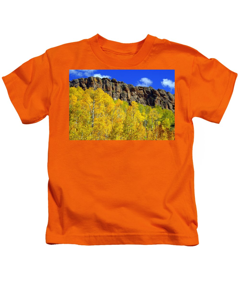 Fall Colors Kids T-Shirt featuring the photograph Aspen Glory by Marty Koch