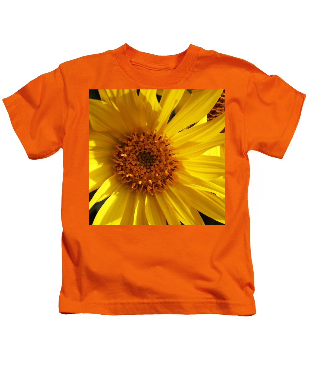 Wildflowers Kids T-Shirt featuring the photograph Balsamroot Flower by Kenneth Willis