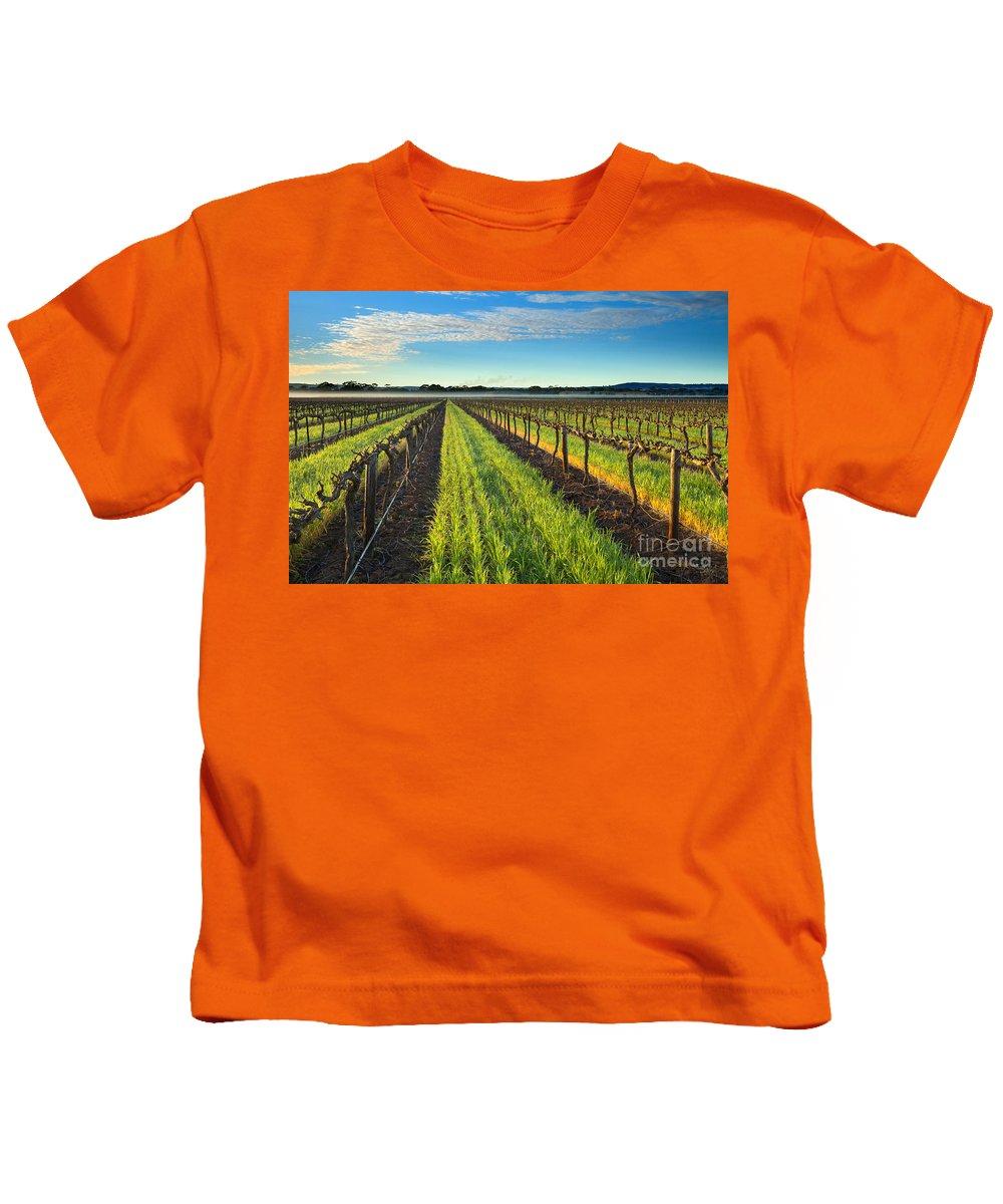 Vineyard Kids T-Shirt featuring the photograph Barrossa Vineyard Sunrise by Mike Dawson