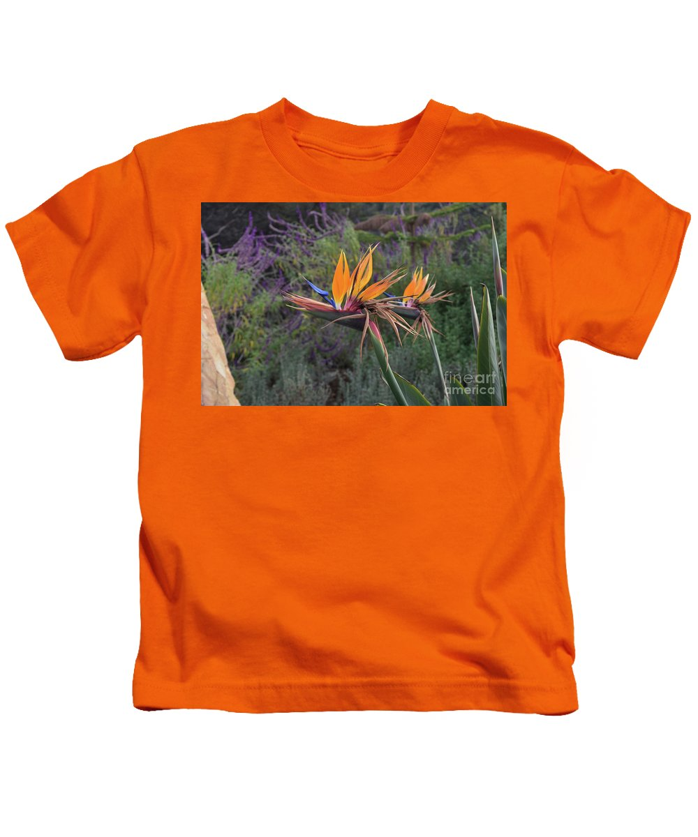 Bird-of-paradise Kids T-Shirt featuring the photograph Beautiful Bright Orange Petals On A Blooming Flower by DejaVu Designs