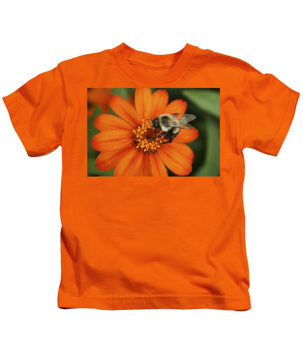 Bee Kids T-Shirt featuring the photograph Bee On Aster by Margie Wildblood