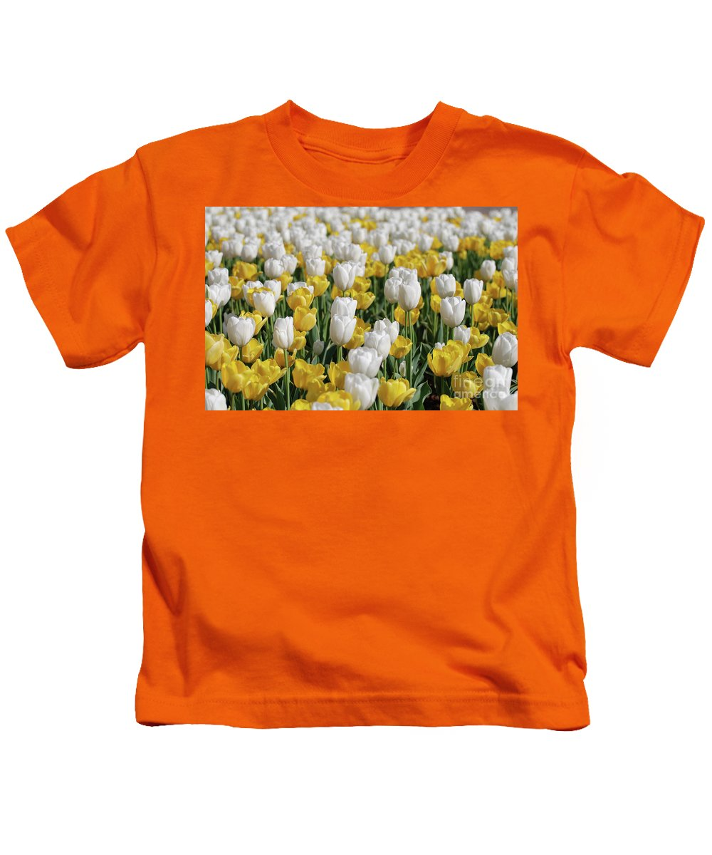 Tulip Kids T-Shirt featuring the photograph Breathtaking Field Of Blooming Yellow And White Tulips by DejaVu Designs