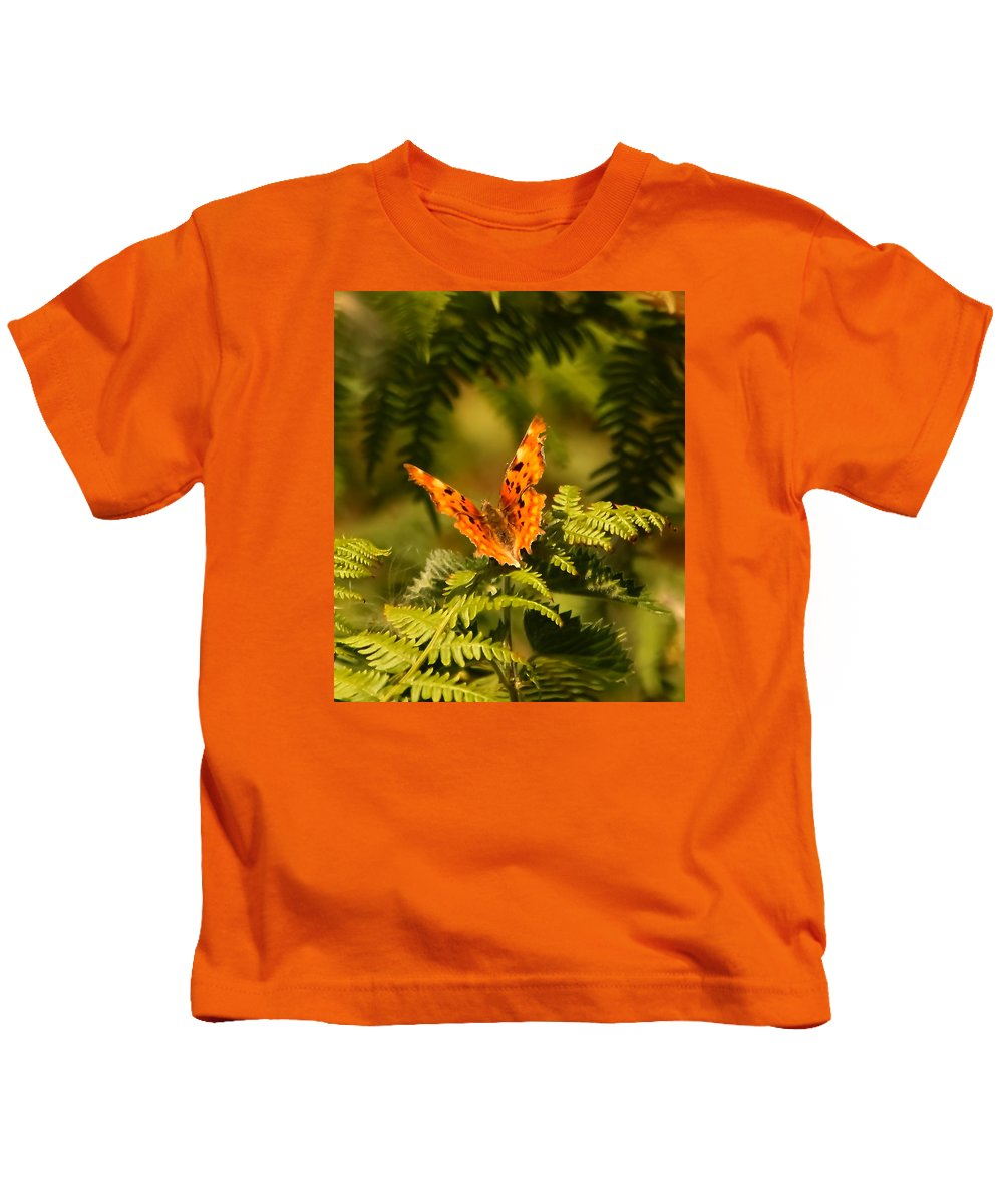 Butterfly Comma Fern Heath Wings Jagged Edges Insect Nature Wildlife Orange Brown Black Buff Markings Kids T-Shirt featuring the photograph Butterfly Comma by Jeff Townsend