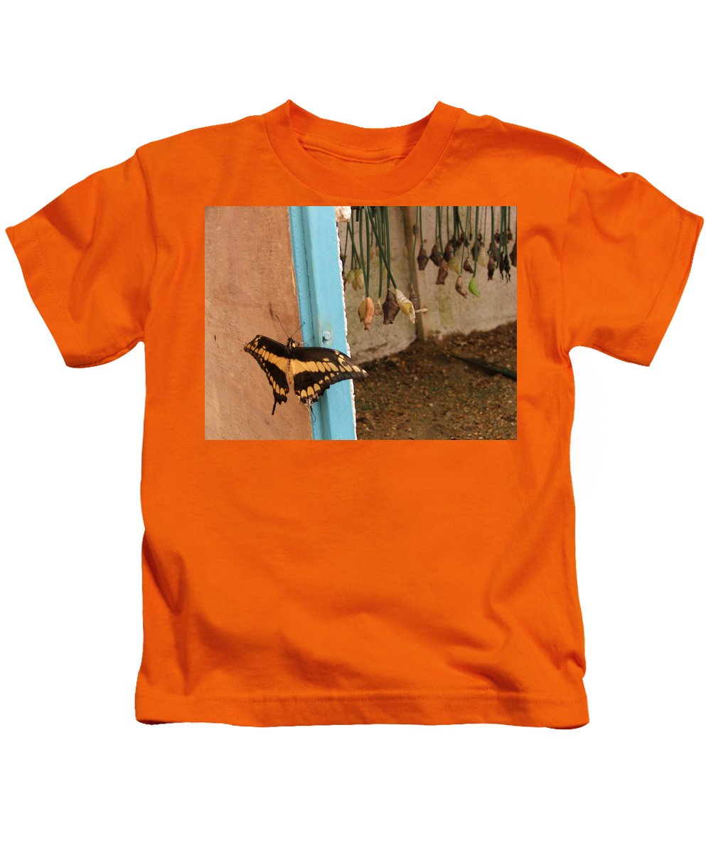 Butterfly Kids T-Shirt featuring the photograph Butterfly Drying His New Wings by Heather Lennox