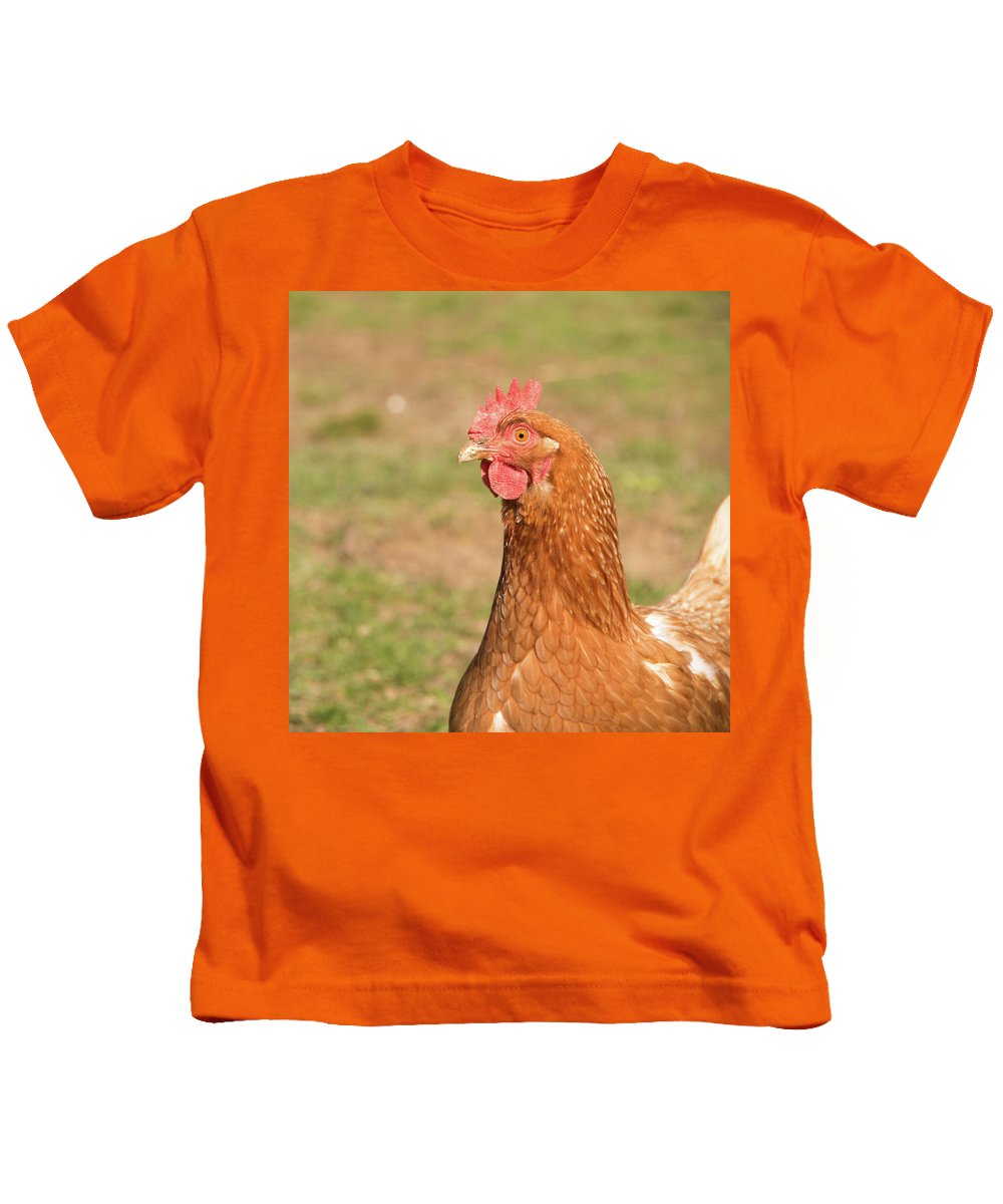 Rooster Kids T-Shirt featuring the photograph Chicken Strutting by Diane Schuler