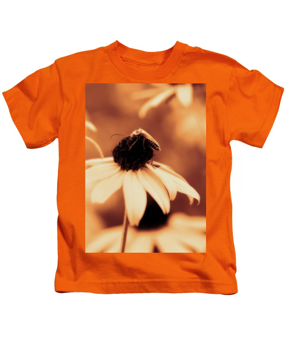 Black Eyed Susan Kids T-Shirt featuring the photograph Comfortably Perched - Gold Glow by Angela Rath