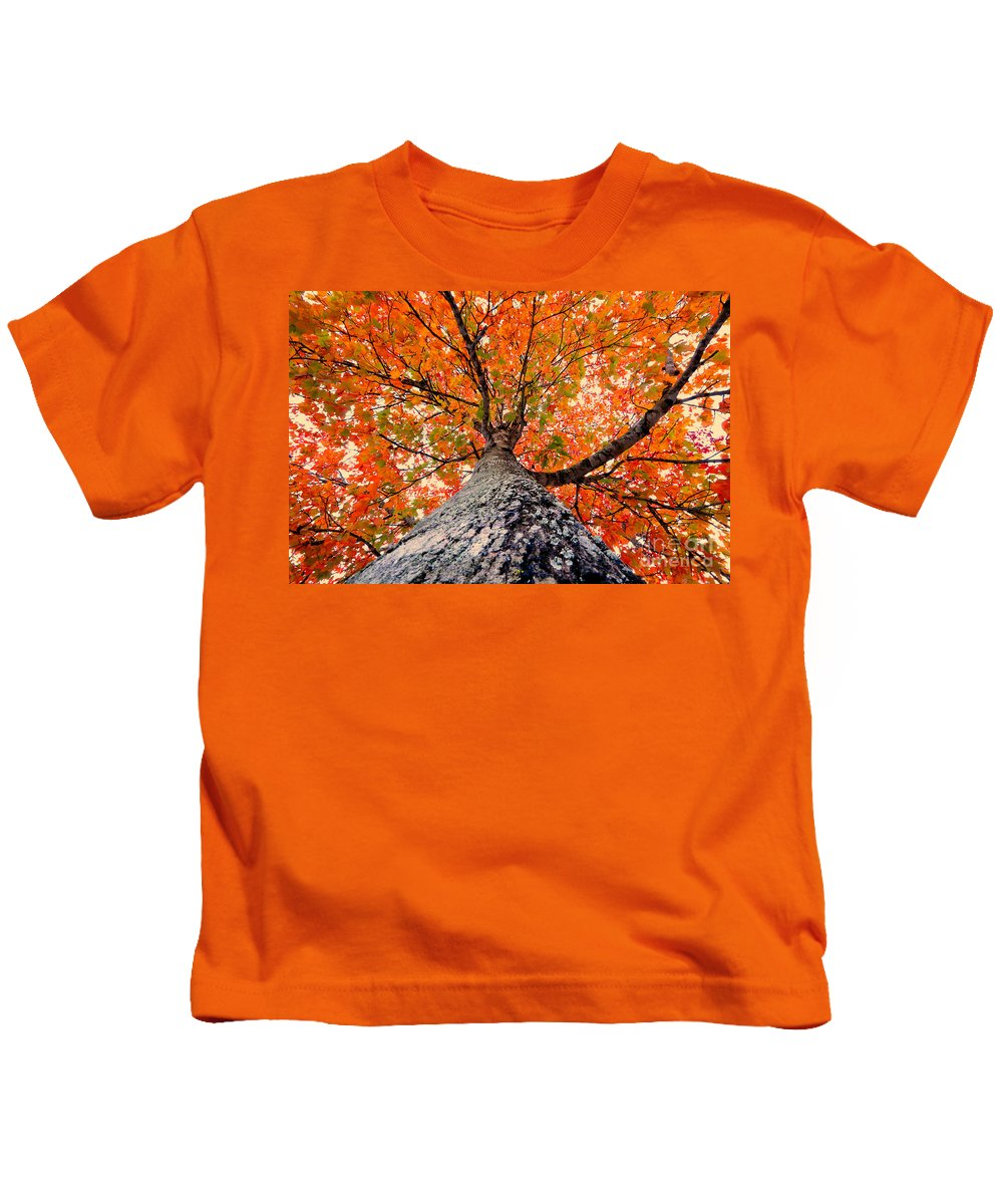 Fall Kids T-Shirt featuring the photograph Covered In Fall by David Lee Thompson