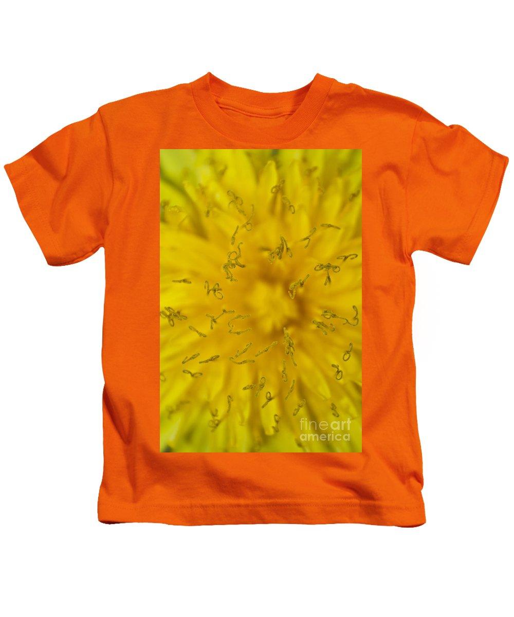 Asteraceae Kids T-Shirt featuring the photograph Dandelion Flower Macro by Dan Radi