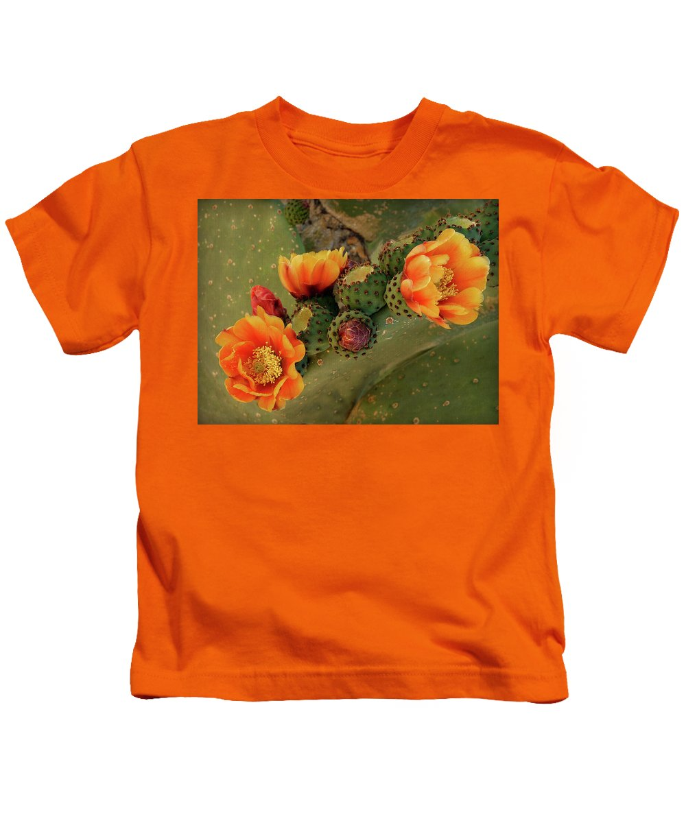 Cactus Kids T-Shirt featuring the photograph Desert Flame by Lucinda Walter