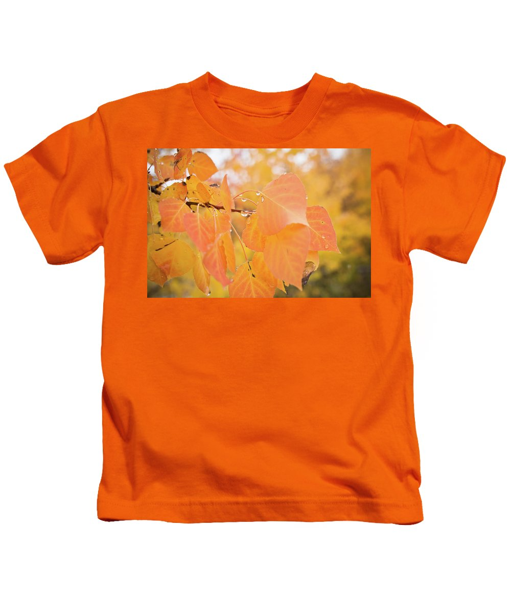 Autumn Kids T-Shirt featuring the photograph Drops Of Autumn by Diane Mintle