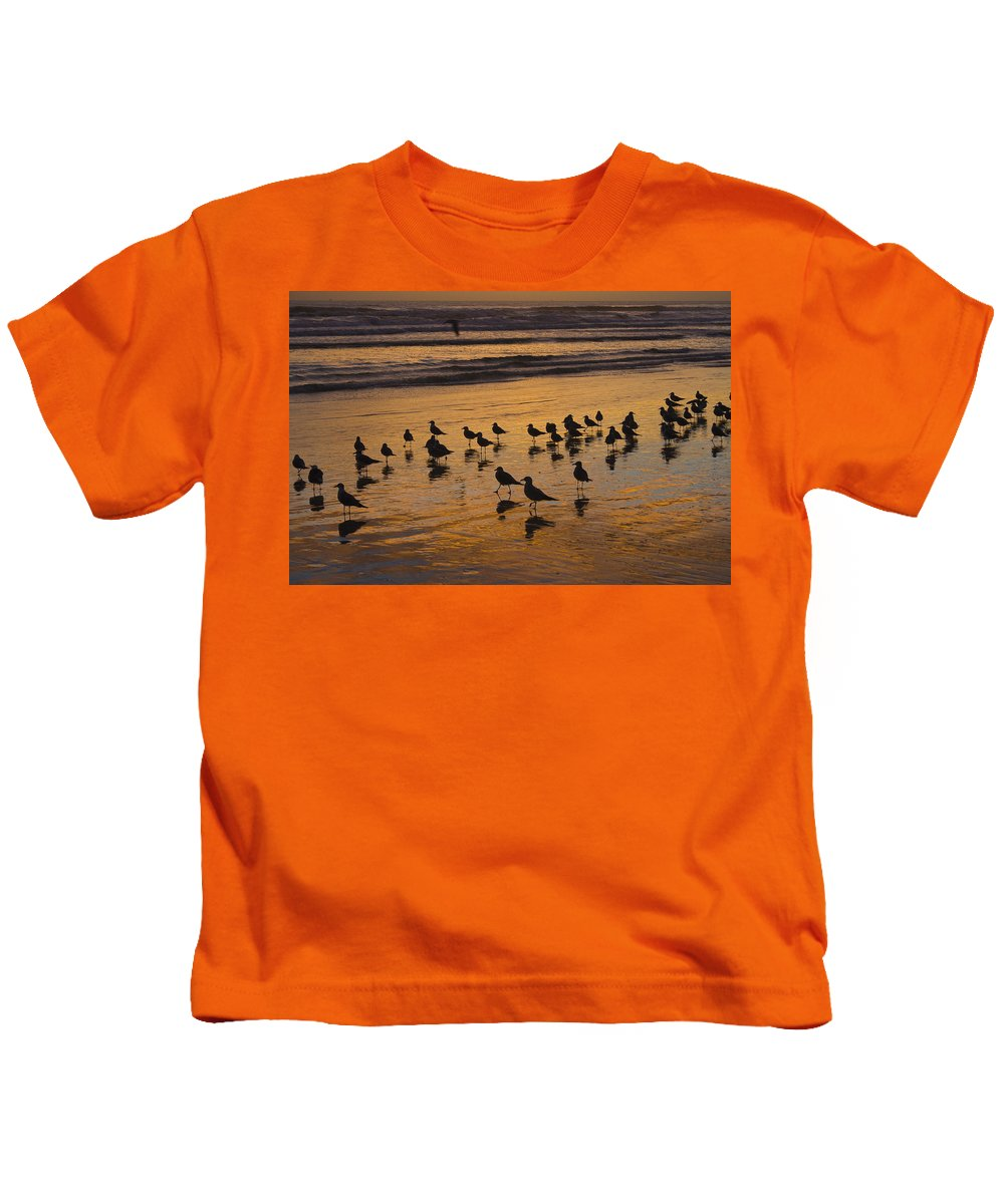 Beach Ocean Seagull Gull Bird Birds Sand Wave Waves Sun Sunrise Reflection Shaddow Sky Cloud Kids T-Shirt featuring the photograph Eager Anticipation by Andrei Shliakhau