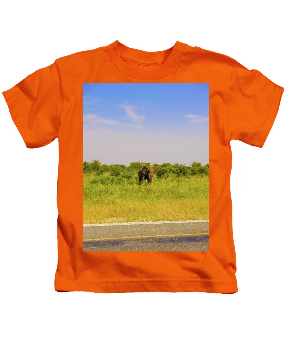 Botswana Kids T-Shirt featuring the photograph Elephant At The Road by Marek Poplawski