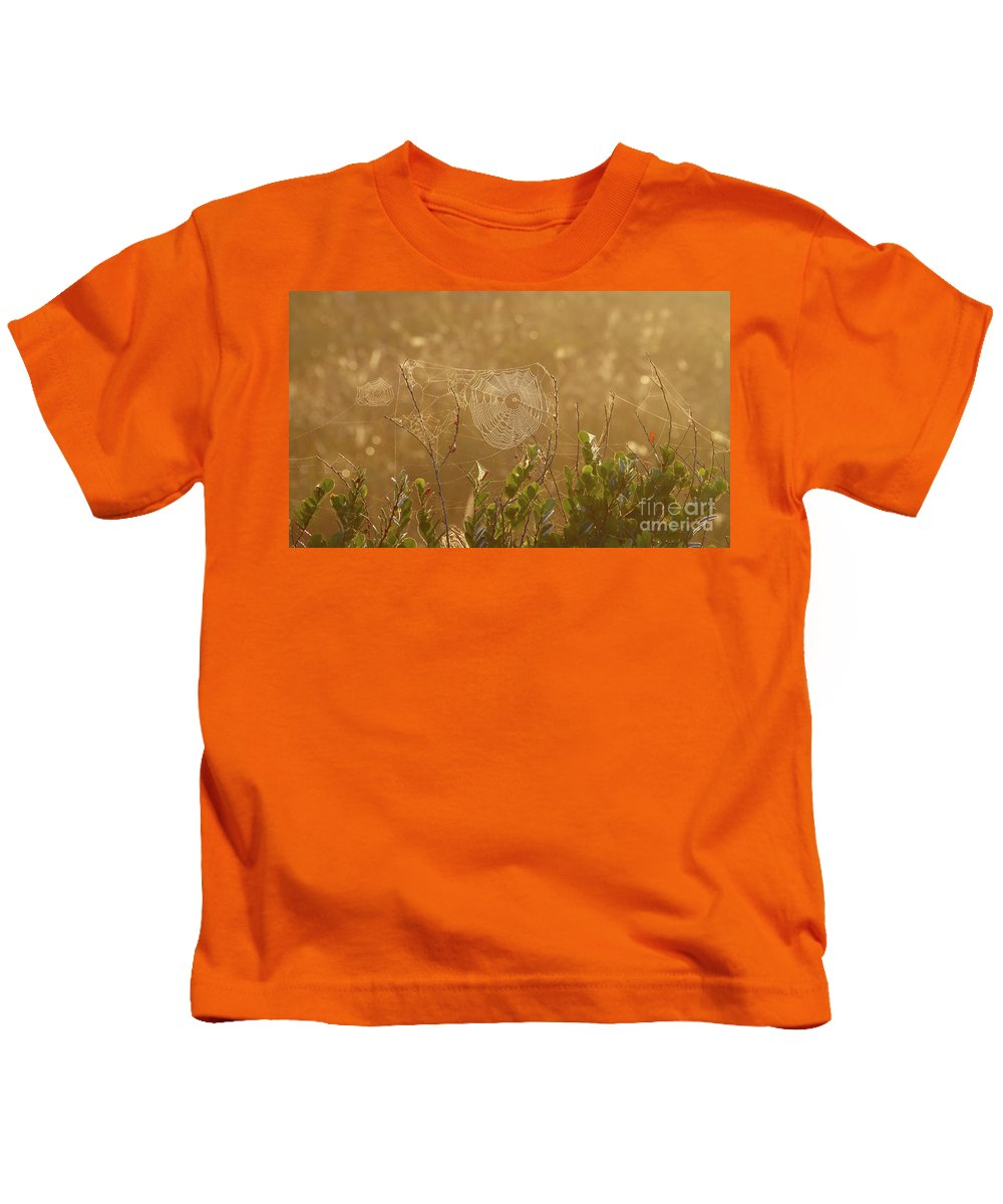 Everglades National Park Florida Kids T-Shirt featuring the photograph Everglades Morning by David Lee Thompson