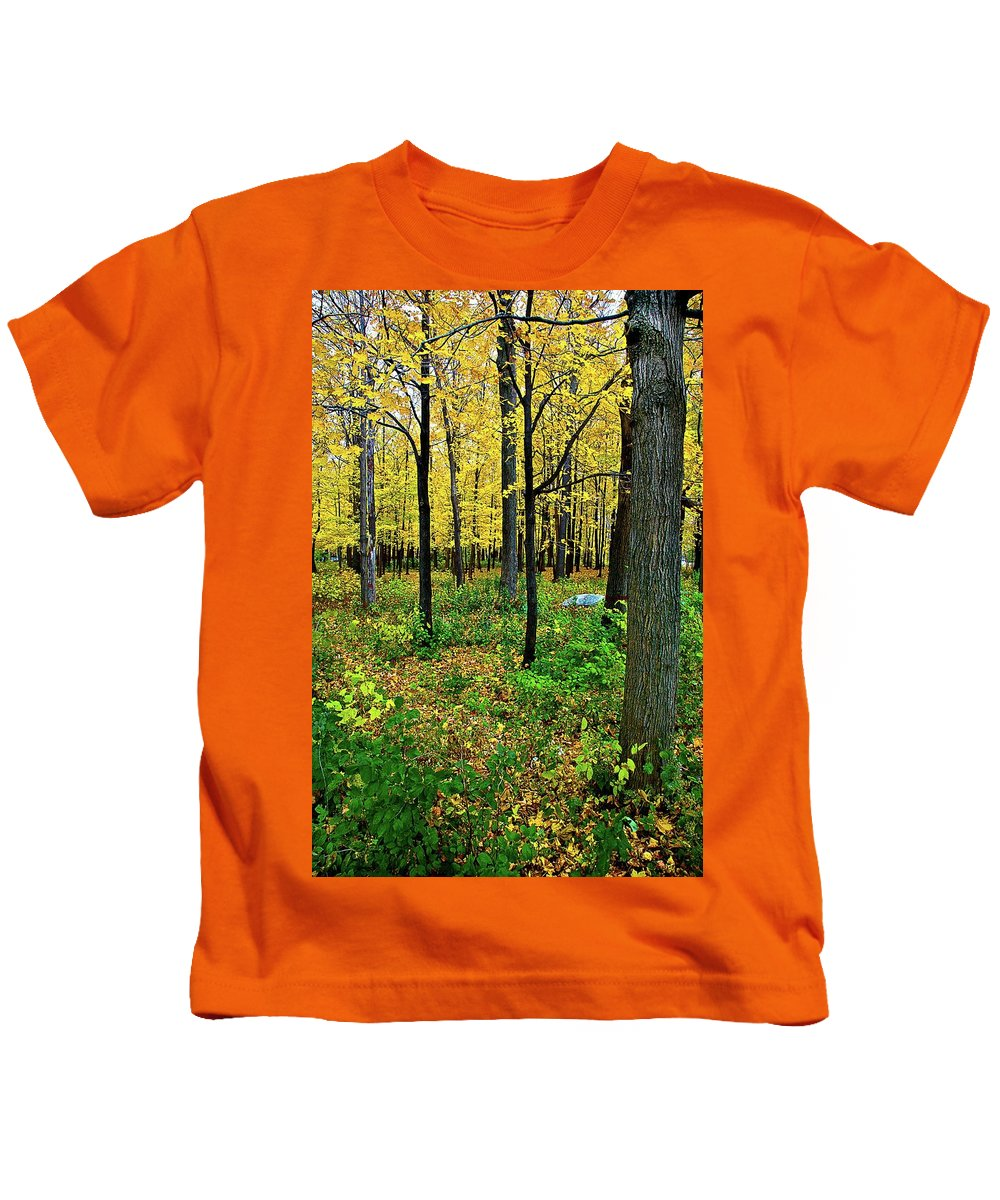 Fall Kids T-Shirt featuring the photograph Fall Fusion by Burney Lieberman