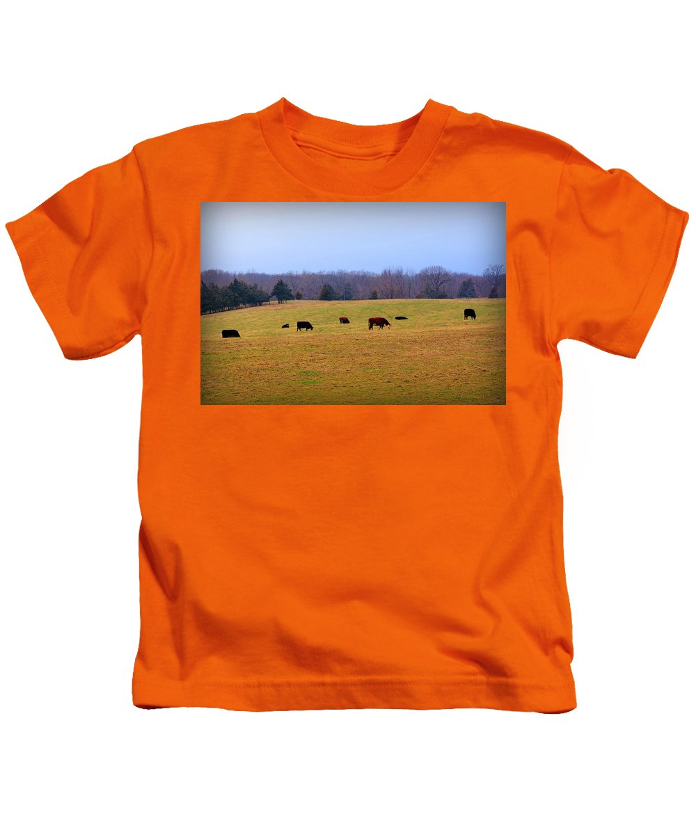 Cows Kids T-Shirt featuring the photograph First Nibbles Of Grass by Cricket Hackmann