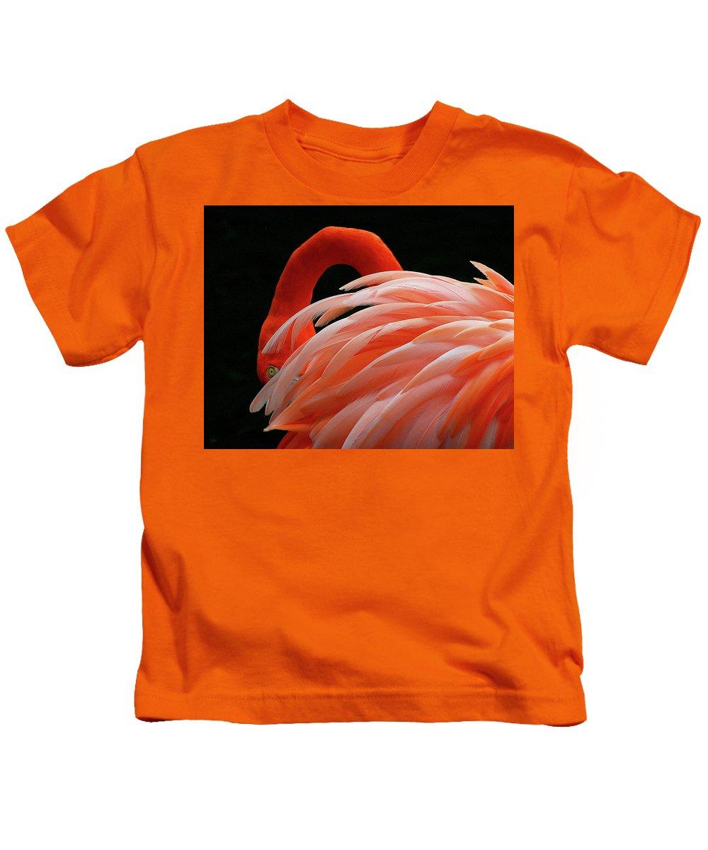 Kids T-Shirt featuring the photograph Flamingo by Gabriel Jardim