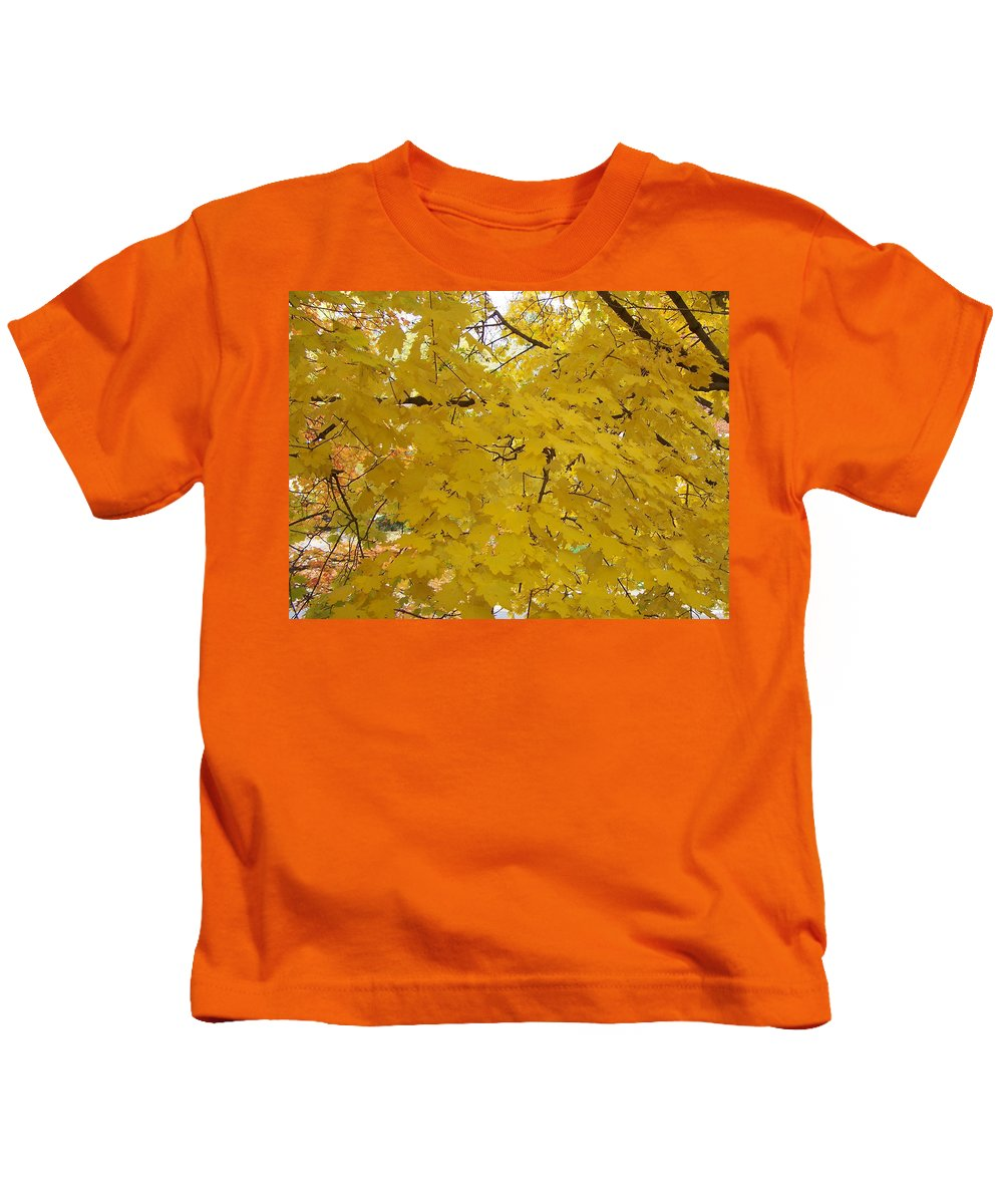 Fall Autum Trees Maple Yellow Kids T-Shirt featuring the photograph Golden Canopy by Karin Dawn Kelshall- Best