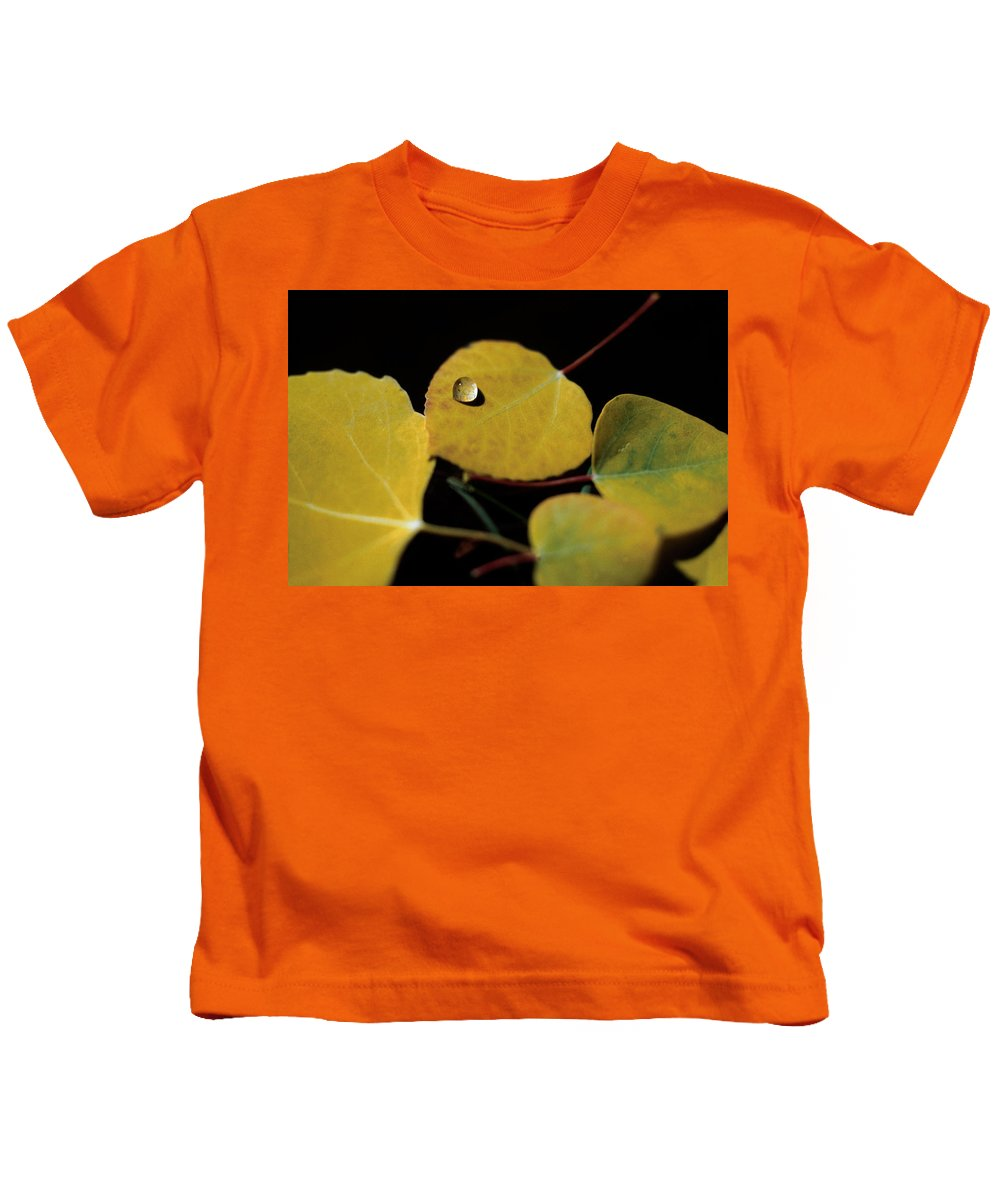 Aspen Kids T-Shirt featuring the photograph Golden Drop by Jerry McElroy