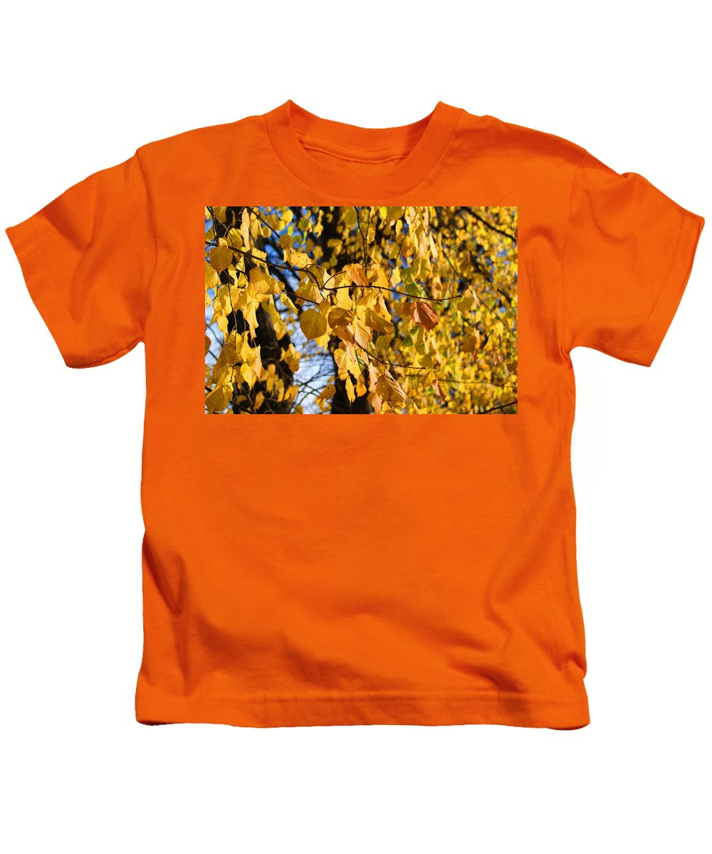 Autumn Kids T-Shirt featuring the photograph Golden Leaves by Carol Lynch