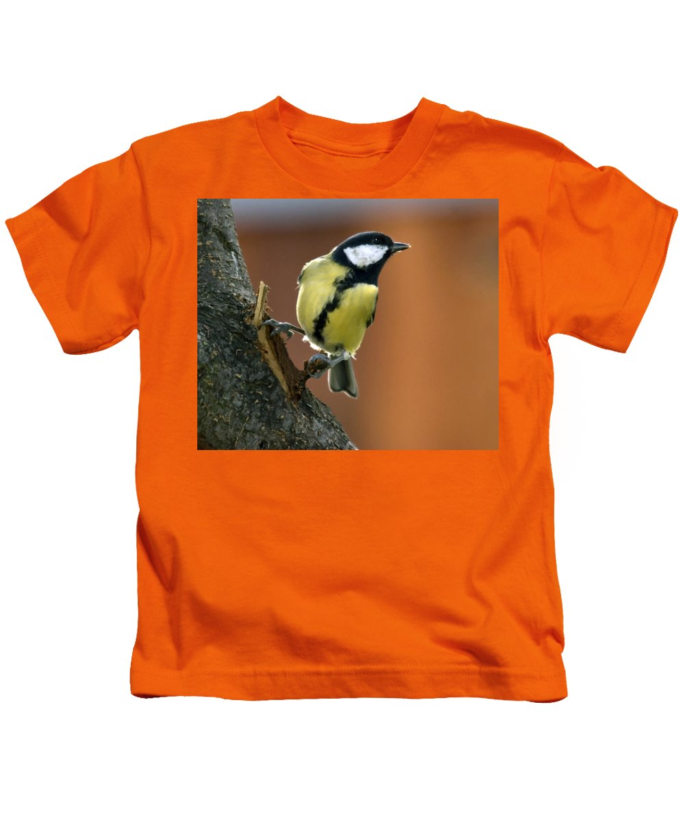 Great Tit Kids T-Shirt featuring the photograph Great Tit by Cliff Norton