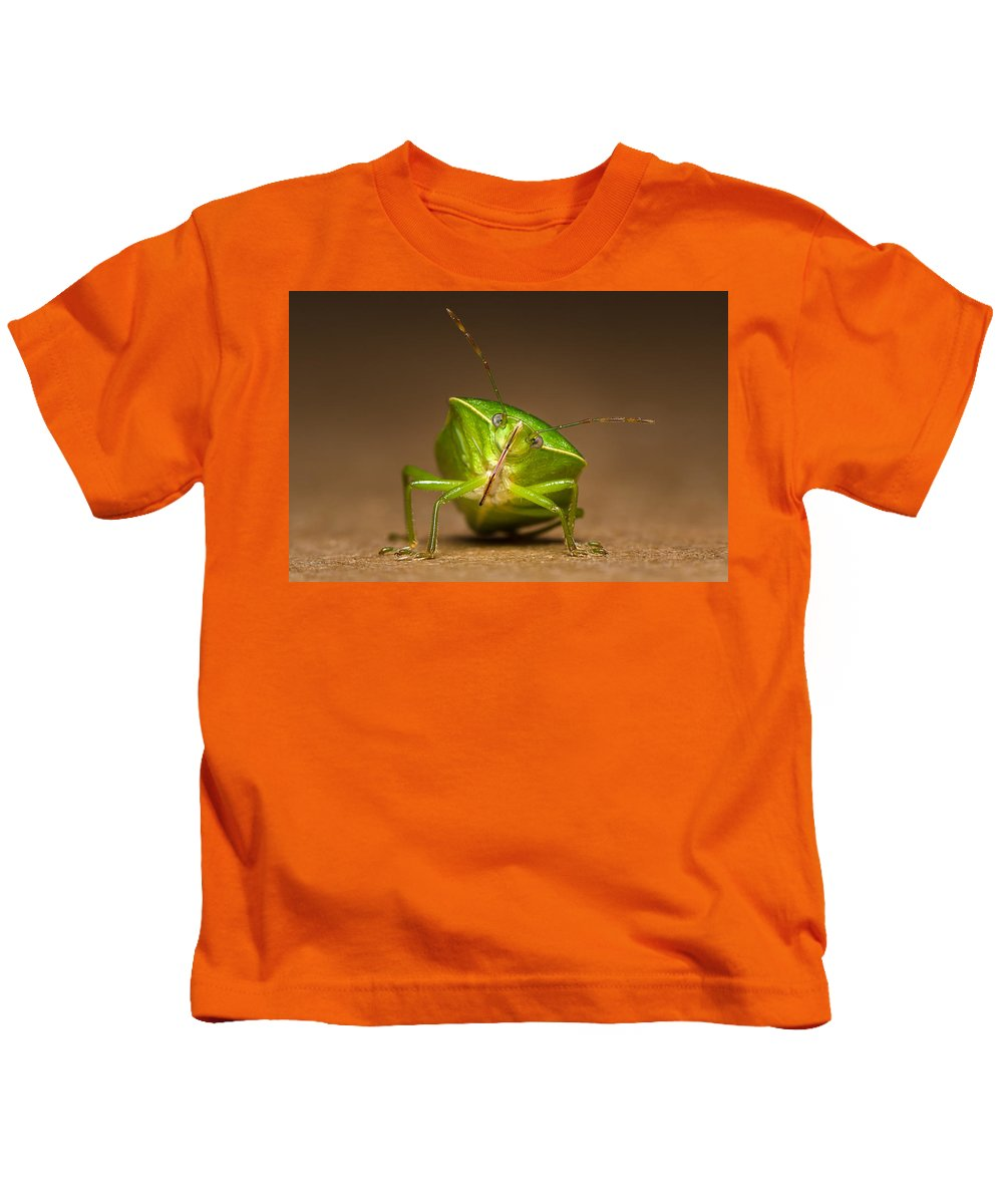 Insect Kids T-Shirt featuring the photograph Green Bug by Tin Lung Chao