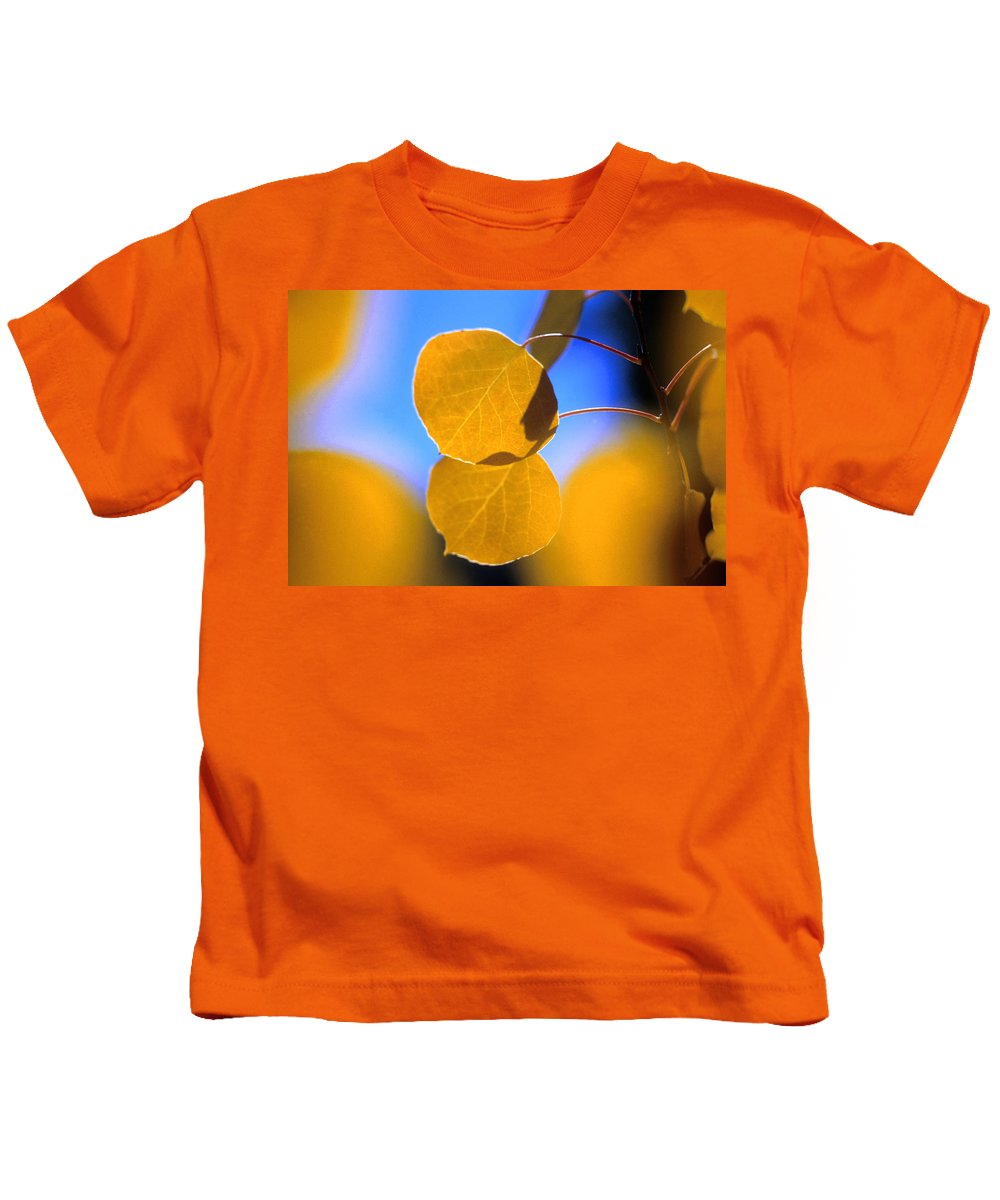 Aspen Kids T-Shirt featuring the photograph High Mountain Glory by Jerry McElroy