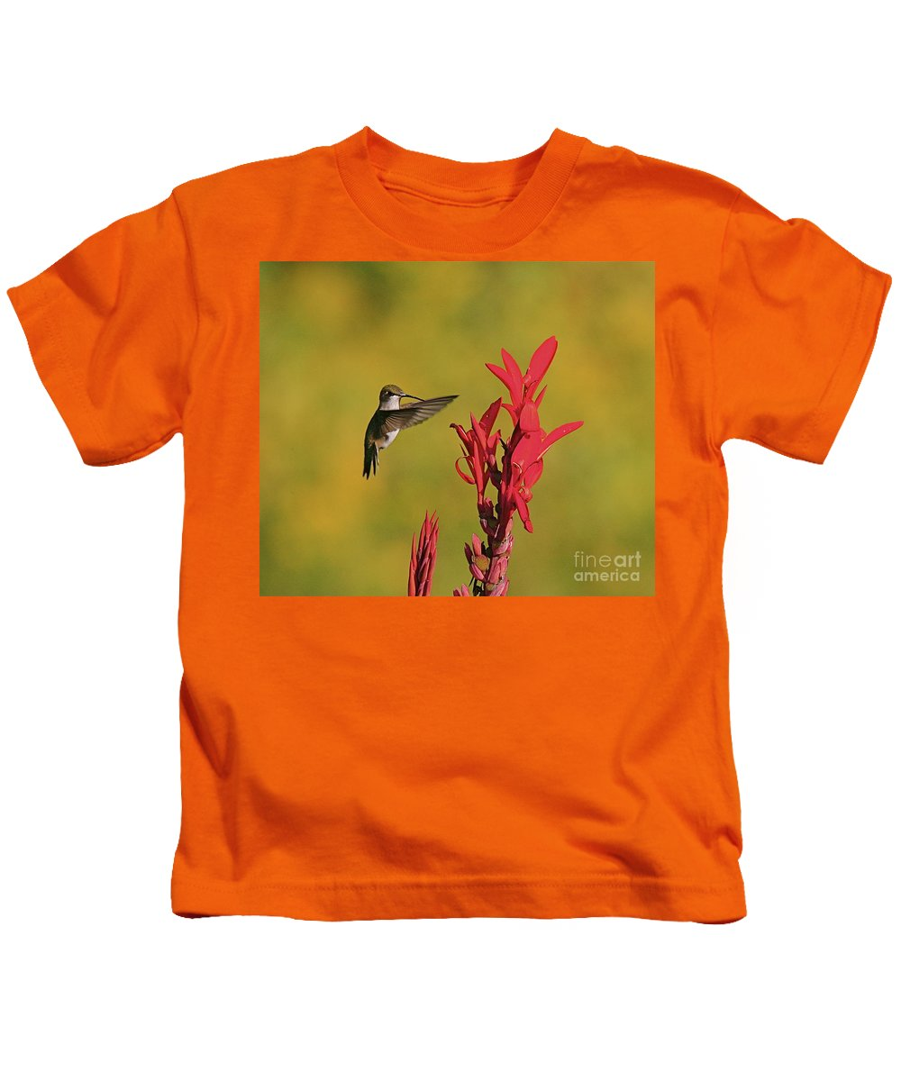 Humming Bird Kids T-Shirt featuring the photograph Hummer by Robert Pearson