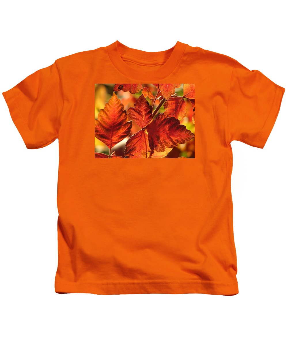 Photograph Kids T-Shirt featuring the photograph Jack Painted My Yard by J R Seymour