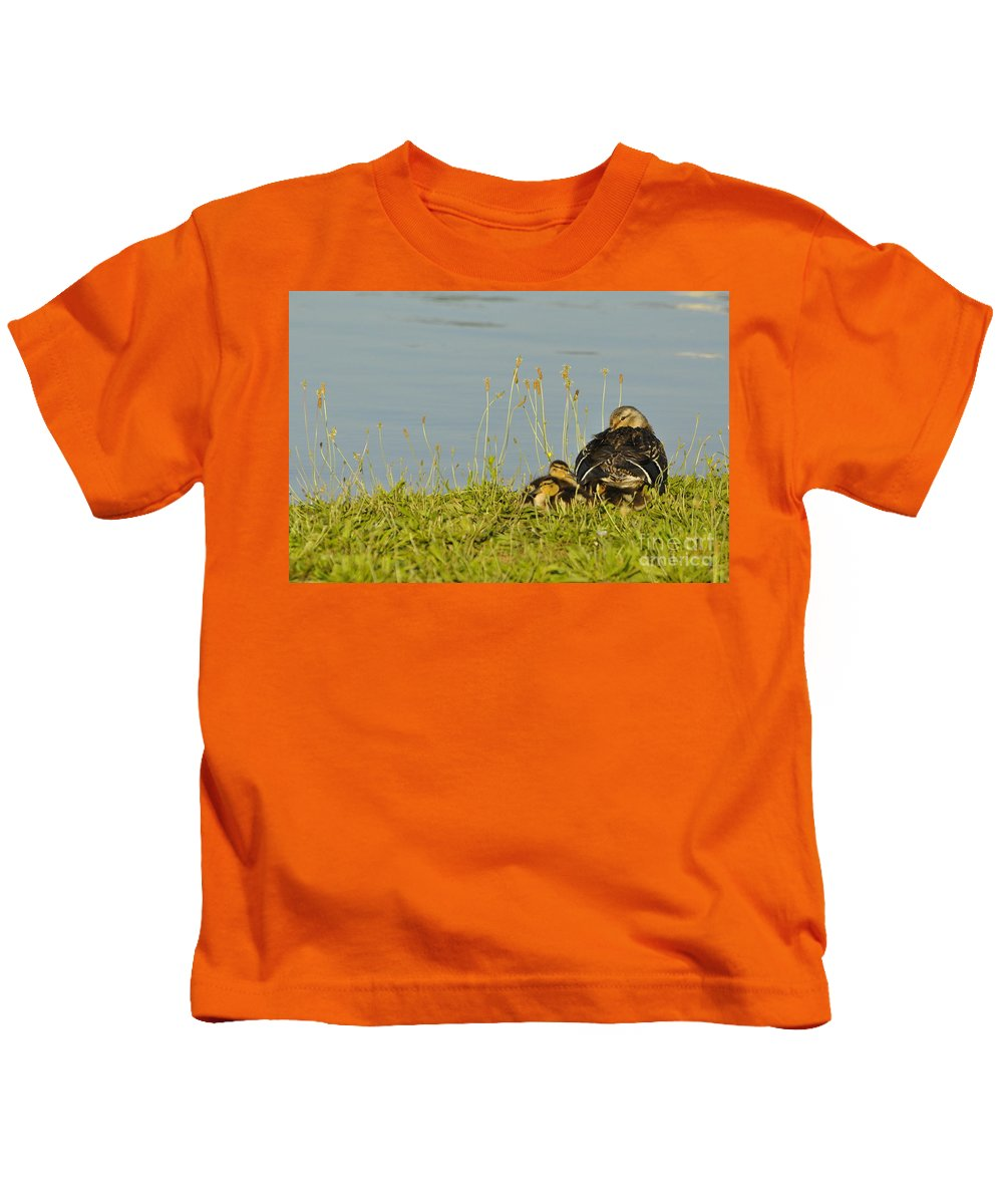 Duck Kids T-Shirt featuring the photograph Little Duck's Moving Day by Vicky Tubb
