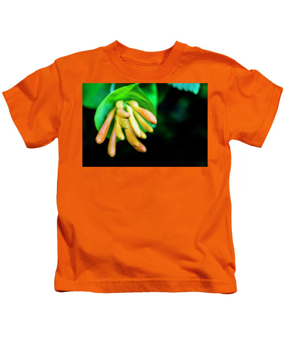 Flower Kids T-Shirt featuring the photograph Long Flower by Joseph Broschart