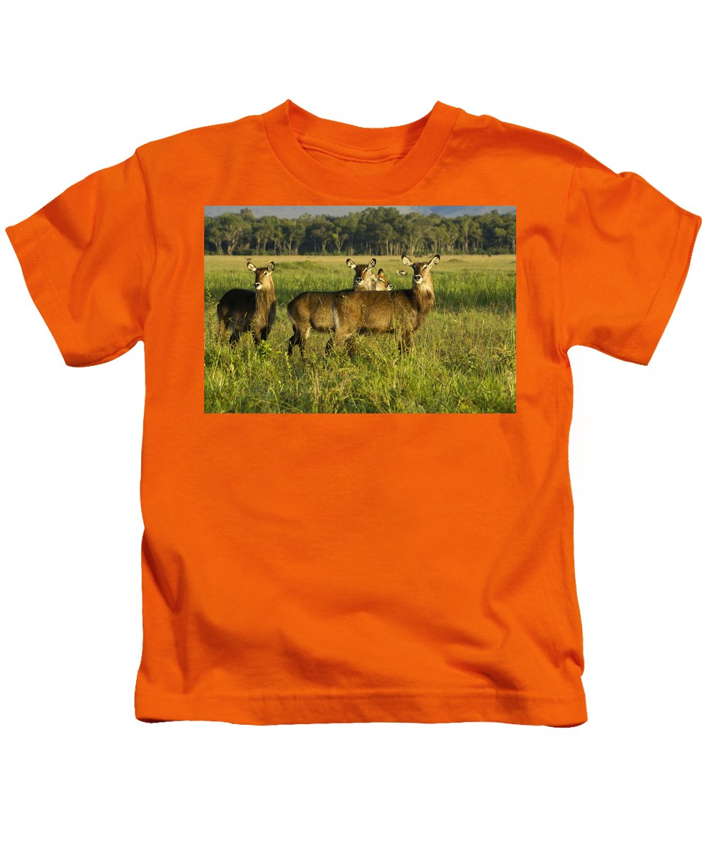 Africa Kids T-Shirt featuring the photograph Lovely Ladies by Michele Burgess