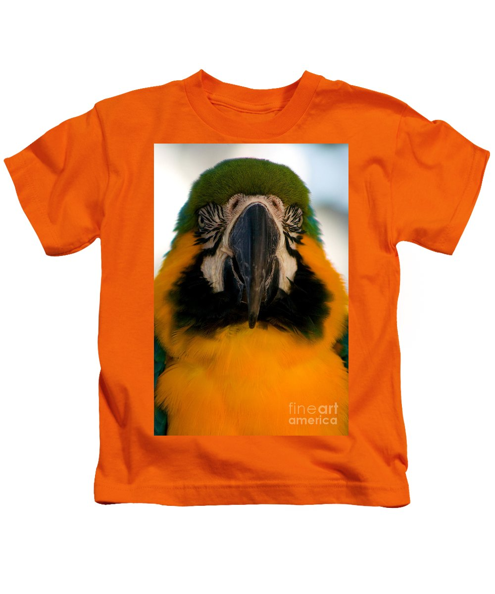 Macaw Kids T-Shirt featuring the photograph Macaw IIi by Thomas Marchessault