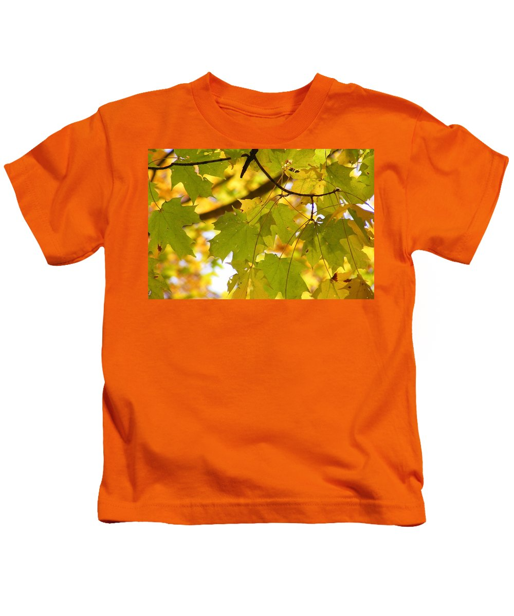 Leaves Kids T-Shirt featuring the photograph Natures Glow by Ed Smith