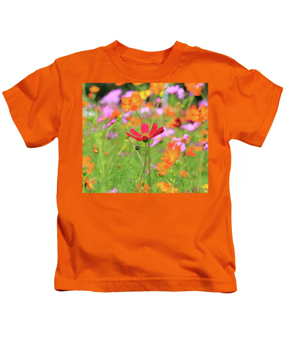 New Jersey Kids T-Shirt featuring the photograph New Jersey Wildflowers by Paul Ranky