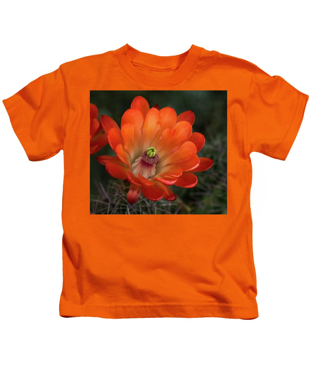 Cactus Blooms Kids T-Shirt featuring the photograph Orange Cactus Blooms by Sherry Adkins