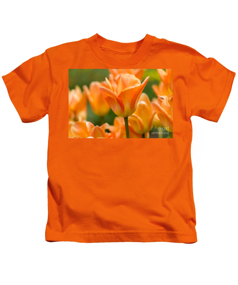 Colorado Kids T-Shirt featuring the photograph Orange Tulips 2 by Ashley M Conger