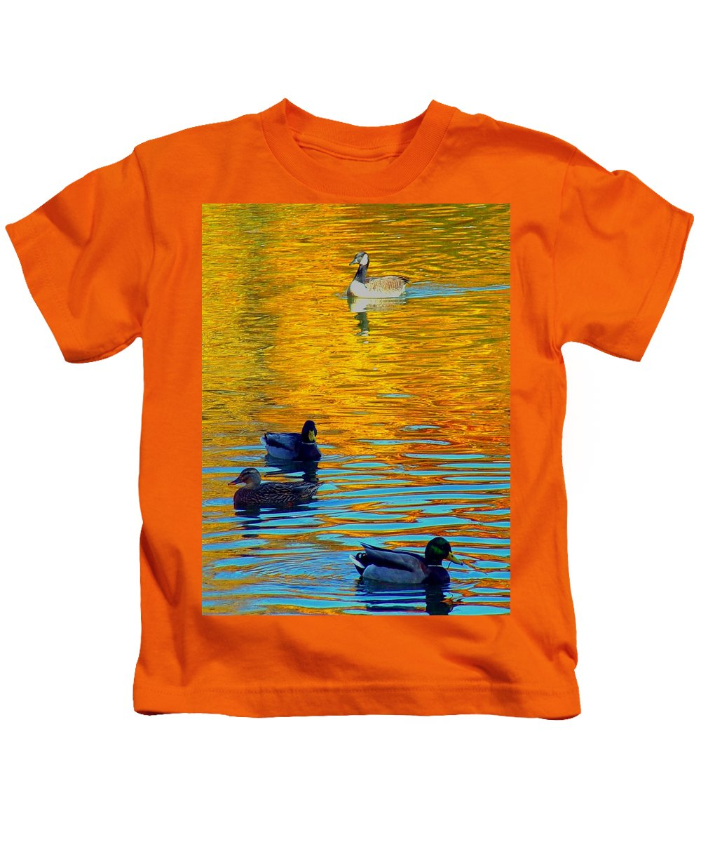Ducks Malard Lake Gold Canada Geese Blue Kids T-Shirt featuring the photograph Possibilities by Jack Diamond