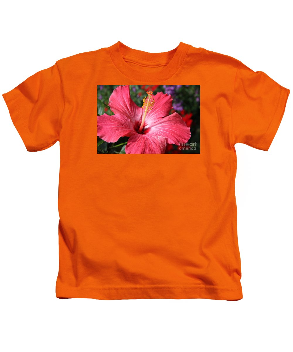 Hibiscus Kids T-Shirt featuring the photograph Red Rose Of Sharon by Christiane Schulze Art And Photography